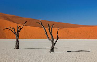 Circuit merveilleuse namibie 3*/4*