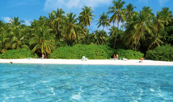 Hôtel Biyadhoo Island Resort 3*