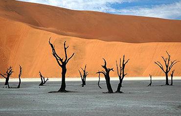 Circuit Premiers Regards Namibie et Kalahari 3*/4*