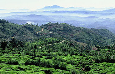 Combiné Sri Lanka 3*