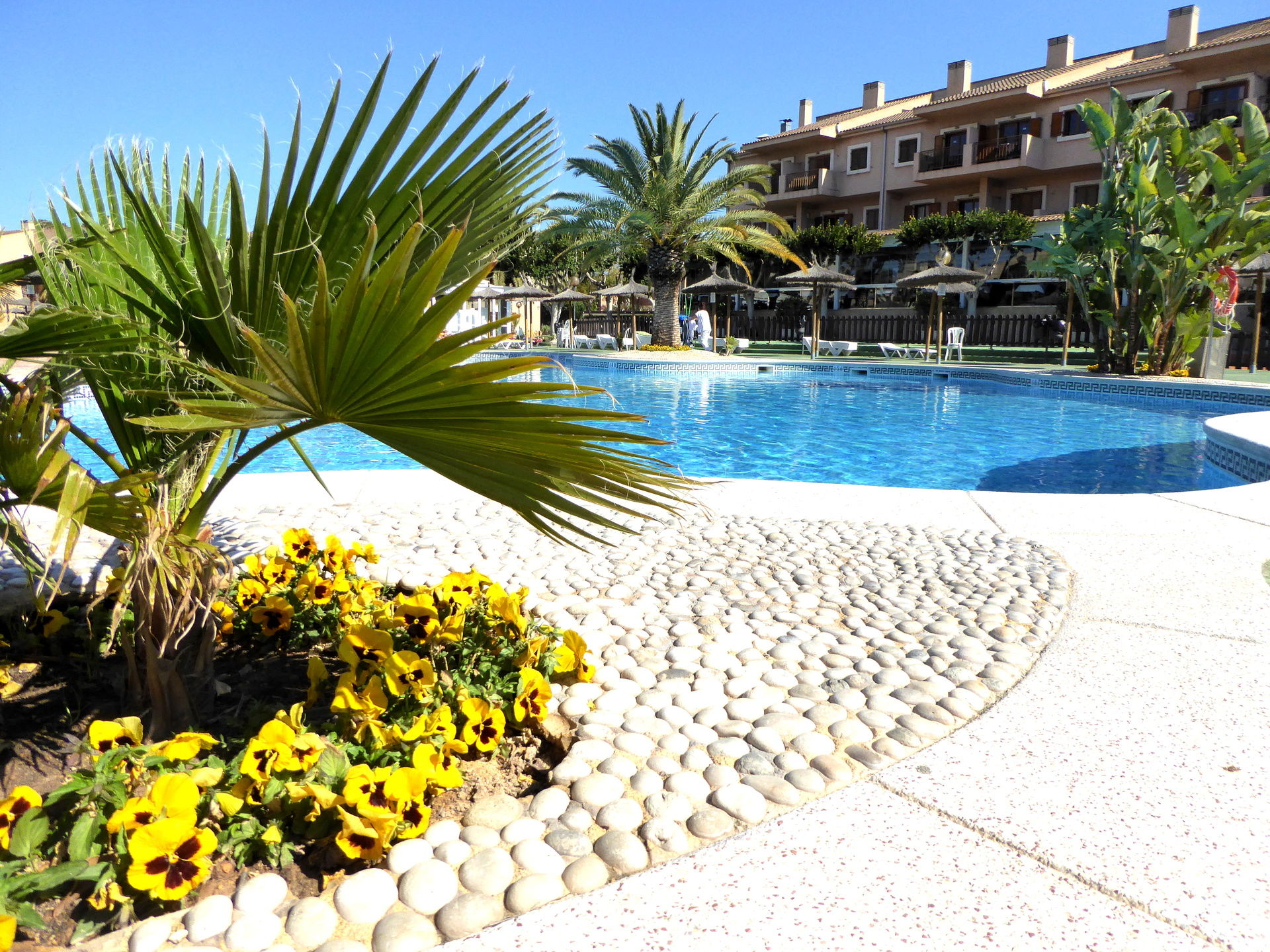 Hôtel albir garden resort 3*