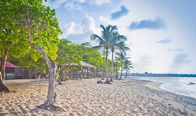 Résidence Tropicale avec Location de voiture