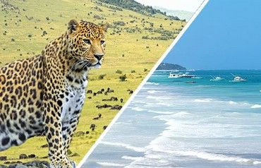 Séjour hôtel jacaranda indian ocean 4* et safari